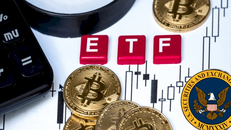 We Bring You The Reasons Why There Is Still Be Hope For The VanEck Bitcoin ETF