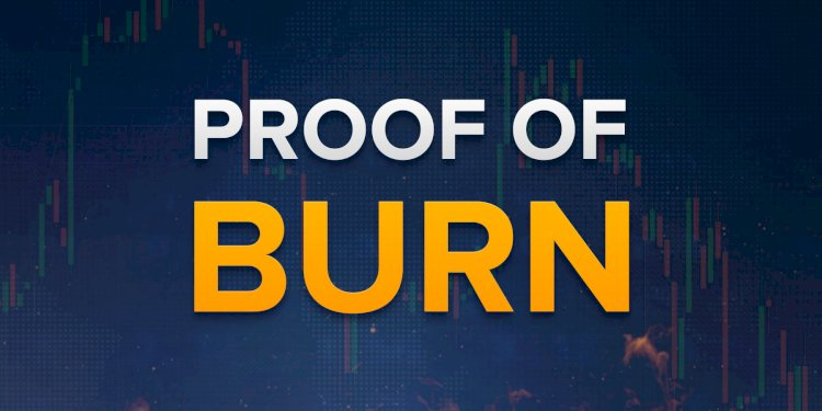 The Proof Of Burn For Cryptocurrency