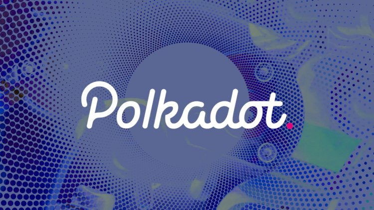 How Does Polkadot Become A Top Ten CryptoContender? A Deep Dive Into It