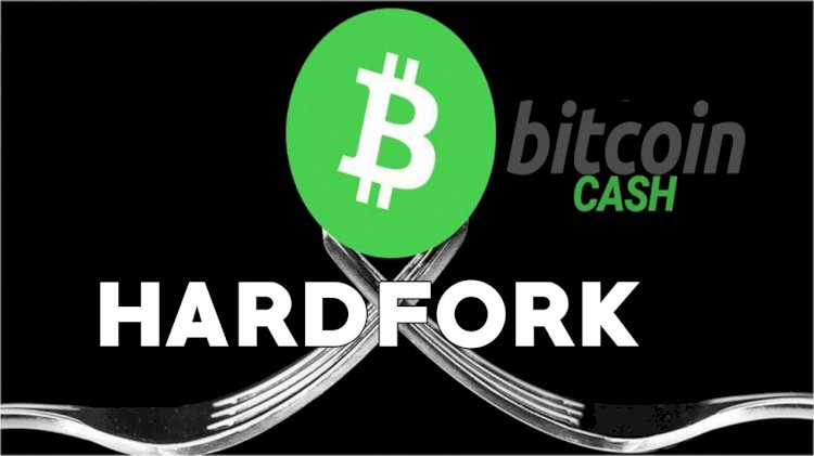 According To Hash Watch: ForUpcoming Fork, Bitcoin Cash Services Reveal Contingency Plans